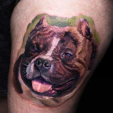 portret psa kolorowy realizm